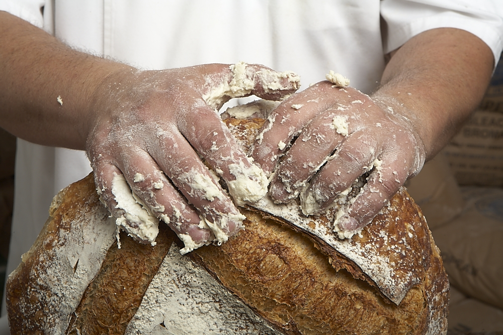 hand-crafted loaves made fresh daily in Cary, NC